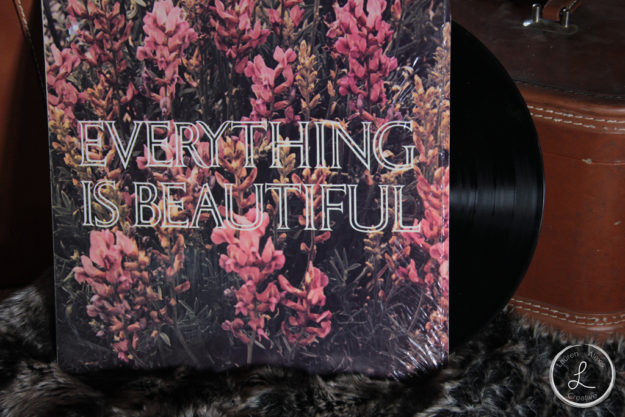 vintage record, record, everything is beautiful, fur product,